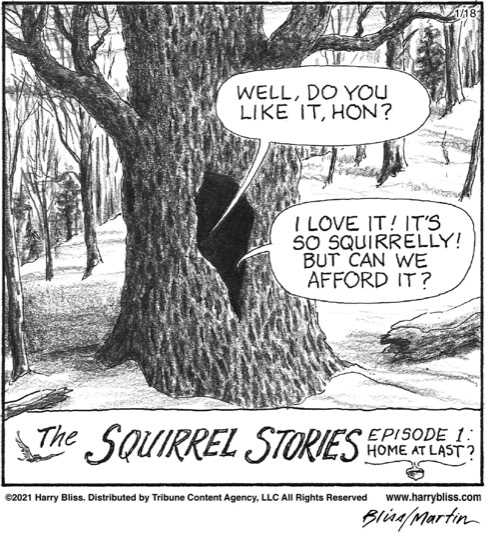 The Squirrel stories