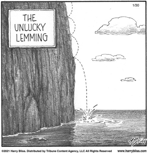 the unlucky lemming