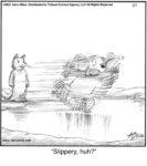 Slippery, huh?.....