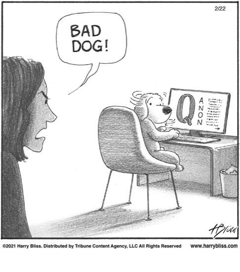 Bad Dog!…