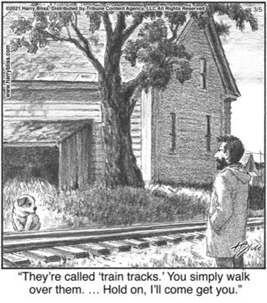 They're called 'train tracks.' …