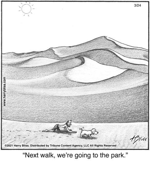 Next walk