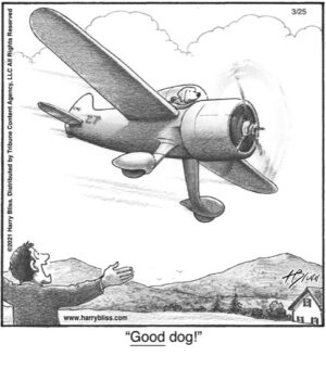 Good Dog!..