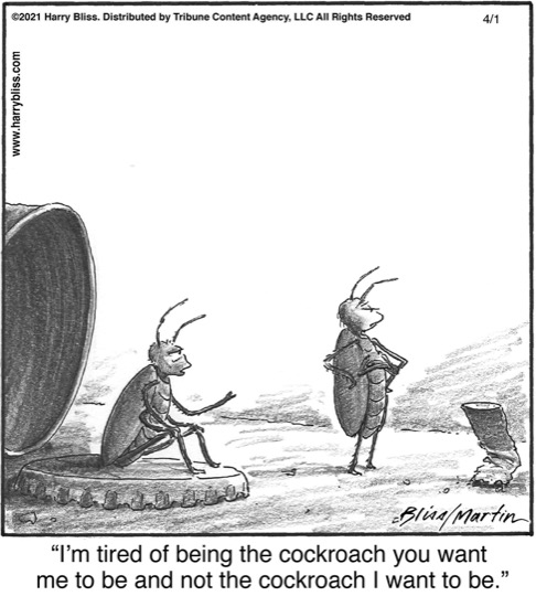 I'm tired of being the cockroach you want…
