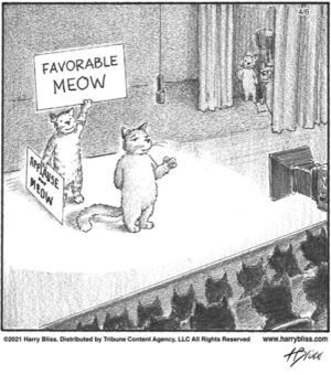Favorable Meow…