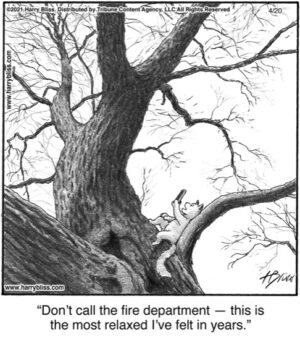 Don't call the fire department…