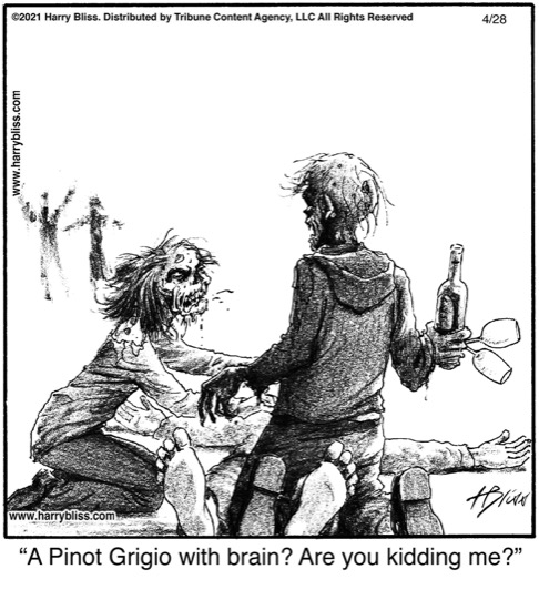 A Pinot Grigio with brain?…