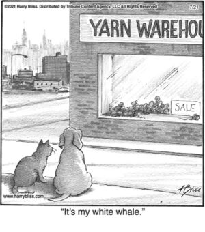 It's my white whale…