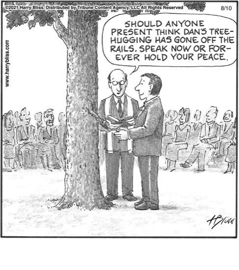 Dan's tree hugging…