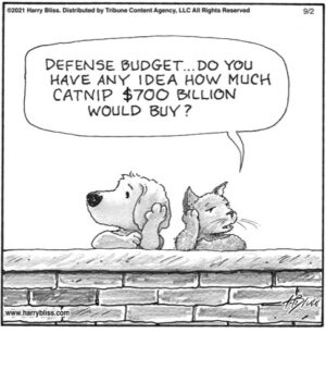 Defence budget… do you have any idea of how much catnip…