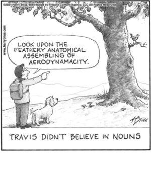 Travis didn't believe in nouns…