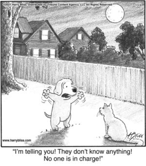 I'm telling you they  don't know anything!…