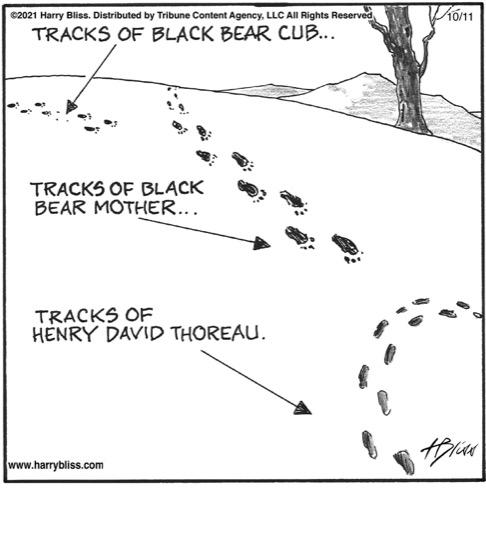 Tracks of Henry David Thoreau…