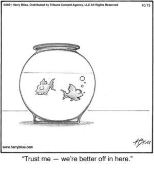 Trust me!…
