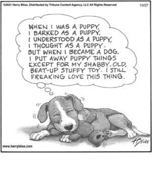 When I was a puppy…